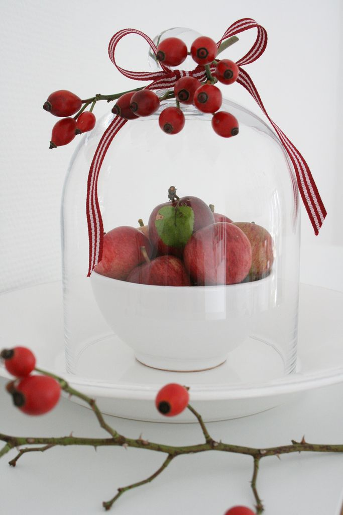 https://flic.kr/p/71ACe6 | Rot! | mini-apples and rose hip