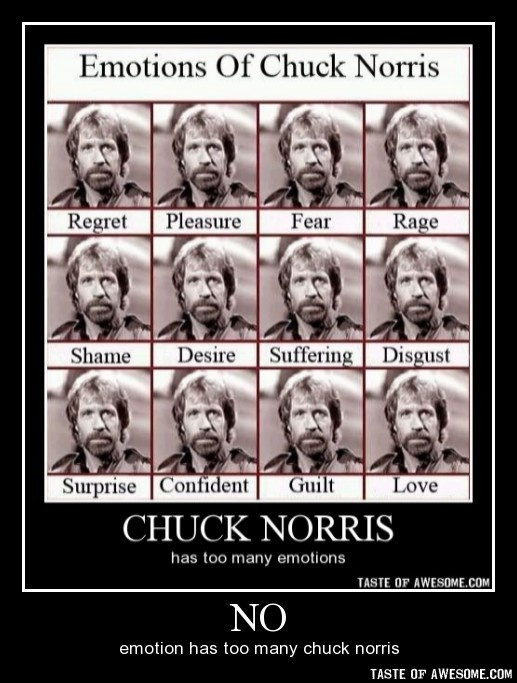chuck norris approved stamp - photo #31