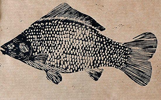 British Carp / fish - linocut print - Amiee Bowker, U.K.