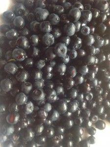 czarne jagody