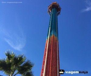 Como é o Parque Busch Gardens, em Tampa, perto de Orlando
