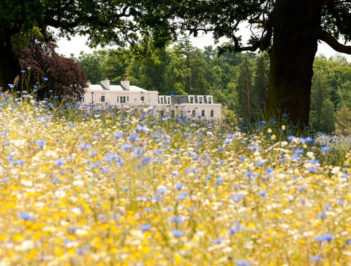Coworth Park's gardens are full of colour. Wedding venue is in Ascot, Berkshire