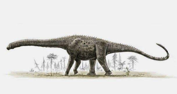 Pesquisadores na Argentina desenterraram o que acreditam ser o maior dinossauro já visto, pesando 80 toneladas e tendo 20 mt de altura.