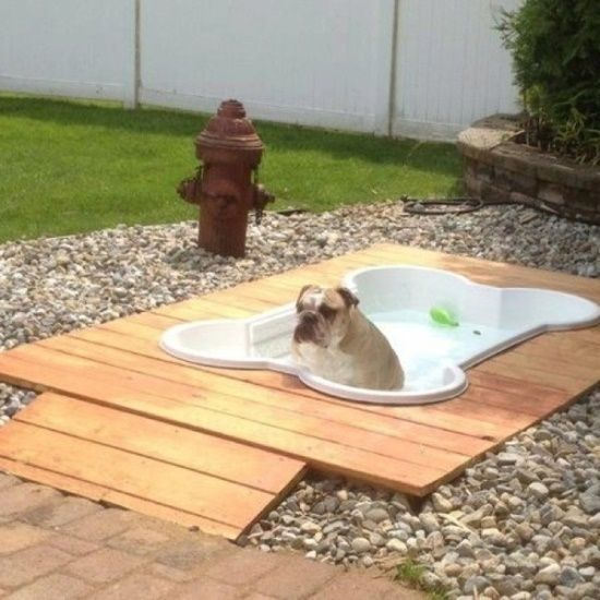 Doggy deck with an inground pool. I love this! Perfect for a backyard pet area. #PinMyDreamBackyard