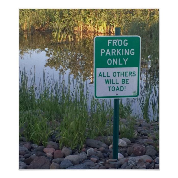 Frog Parking Only Poster Print | Zazzle.com