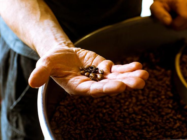 Perk Up With Seven Local Roasters | Culinaire Magazine