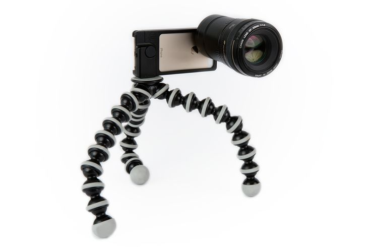 The King Size Gorillapod - Bendable and flexible king size tripod wraps around just about anything to hold your phonecam or SLR. ($50.00, http://photojojo.com/store)