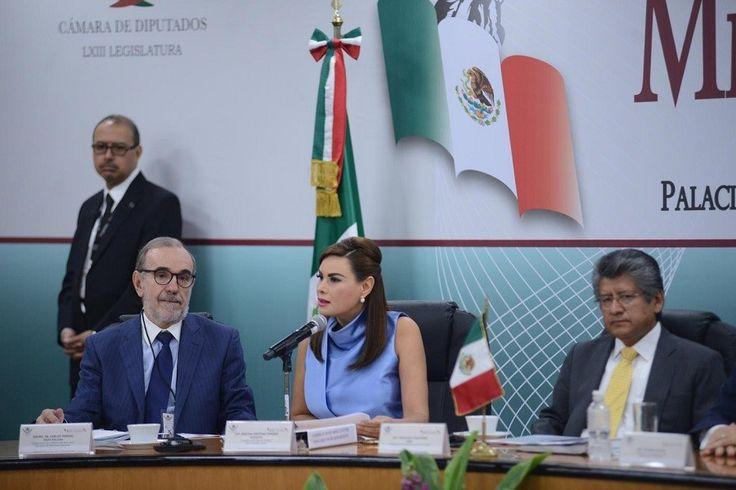 <p>Chihuahua, Chih.- La diputada federal del Partido Acción Nacional, Cristina Jiménez Márquez, aprovechará el presente receso