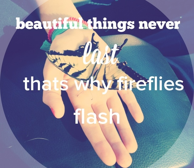 •Ron pope, fireflies