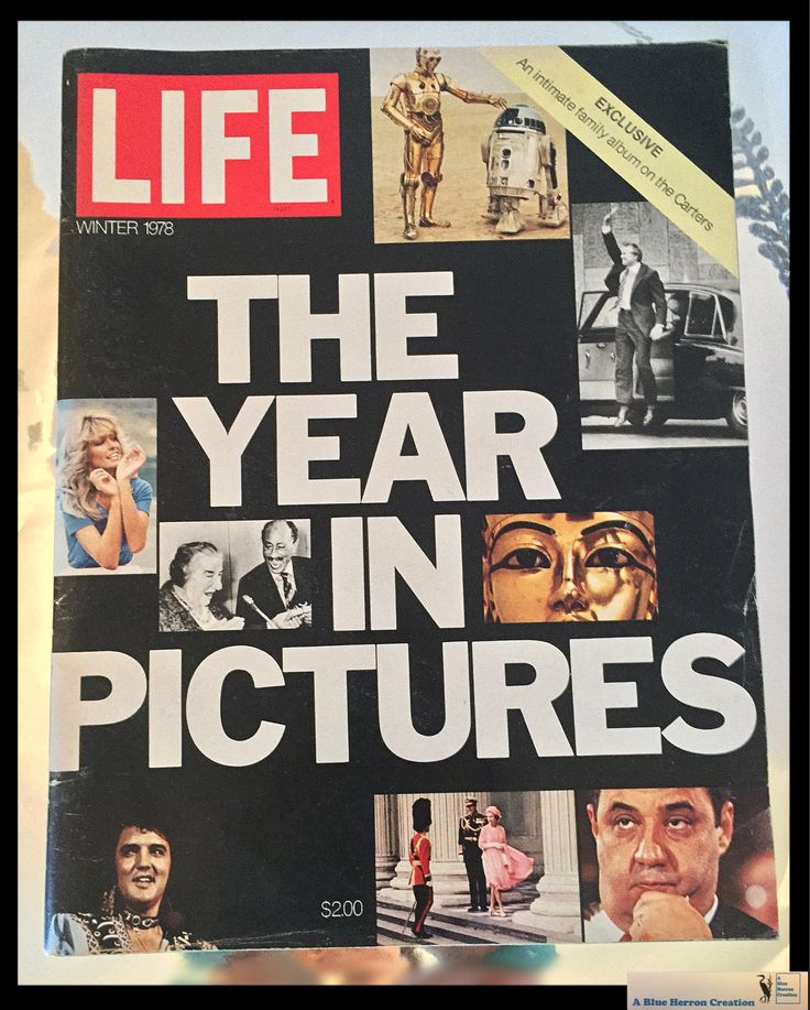 Vintage Life Magazine The Year In Pictures Winter 1978, Magazine, Star Wars, Queen, Elvis, Carter plus Ephemera, Scrapbooking, Gifts For Him by ABlueHerronCreation on Etsy