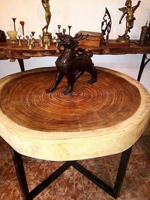 Solid wood from the brazilian savannas