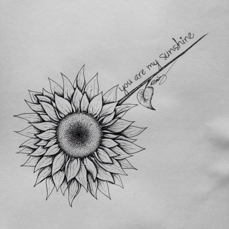 Sunflower tattoo drawing for a friend :)