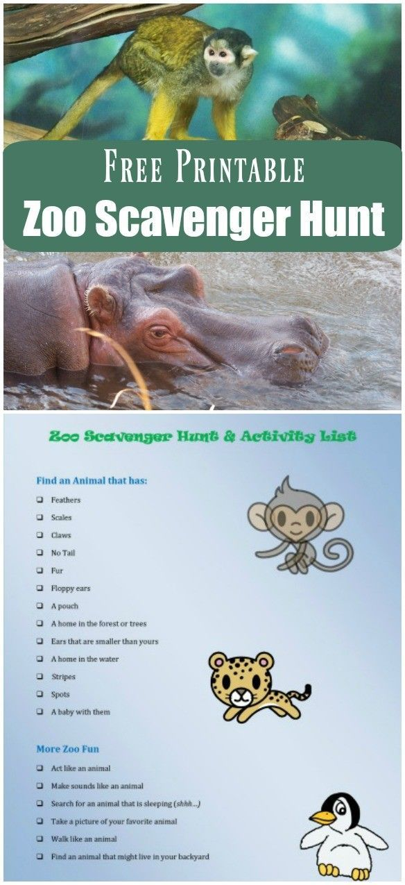 Zoo Scavenger Hunt (FREE printable!) | Animal activities | things to do at the zoo