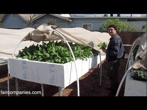 The Future of Food – Self-Sustained Backyard Aquaponics Farm in L.A. ~ http://wakingtimes.com/gallery/2014/02/24/future-food-self-sustained-backyard-aquaponics-farm-l/