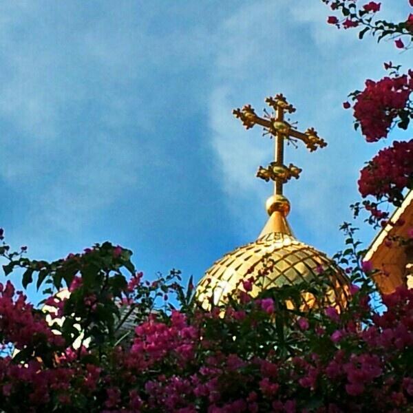 Ortodoxa ALTEA
