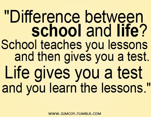 Funny Lessons Learned Quotes funny lessons learned quotes 500x388 ...