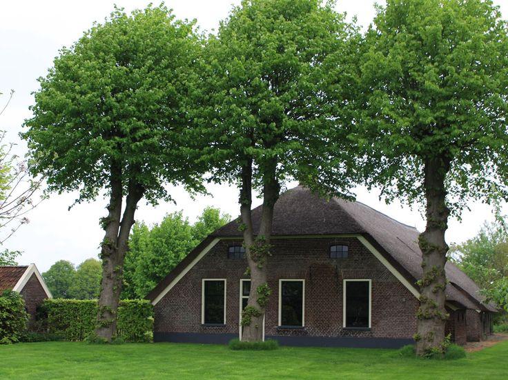 Lheebroek 6 , bij Lhee, Drente, the Netherlands