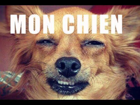 Mon chien - Natoo  Hahaha , à voir ! Natoo & Kemar