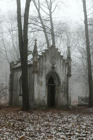 An abandoned  gothic chapel amongst the trees on a cold and misty day