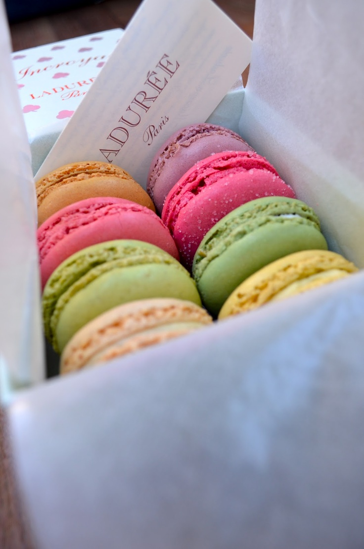 macarons. laduree. paris, france.