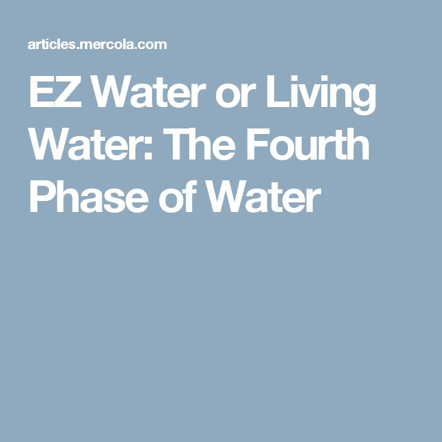 EZ Water or Living Water: The Fourth Phase of Water