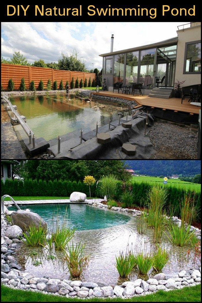 Diy Natural Swimming Pond Build Backyard Pool Designs Swimming Pond Natural Swimming Ponds