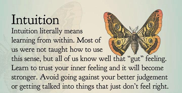 Intuition!Intuitive Quotes, Thoughts, Remember This, Life, Spirituality, Listening, Learning, Inspiration Quotes, Feelings
