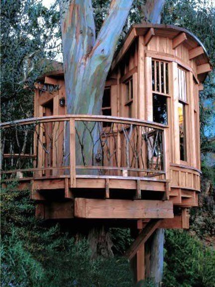 more than just a tree house