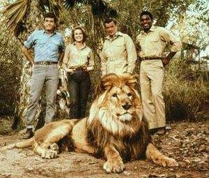 Daktari,........loved the cross eyed lion Clarence