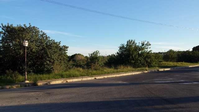 MIL ANUNCIOS.COM - Compra-venta de terrenos en Torrevieja. Terrenos en venta sin intermediarios.