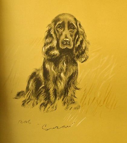 Art - Dog - Drawing by Lucy Dawson