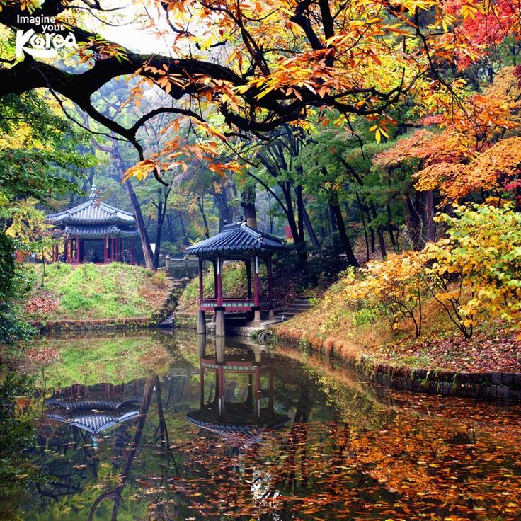 Royal Palace, Seoul                                                                                                                                                                                 More