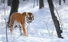 painting, forest, Winter, taiga, tiger, animals