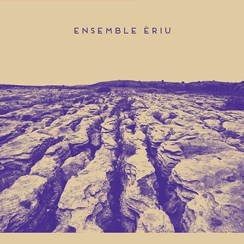 """""""Ensemble"""" is a great word choice: it conveys the idea of a group of musicians playing in the field of either classical, contemporary or jazz music, while in the Irish context, composer Seán Ó Riada's band Ceoltóirí Chualann introduced the idea of ensemble playing in traditional Irish music in the early 1960s. The music of the Ensemble Ériu project encompasses all of the above."""