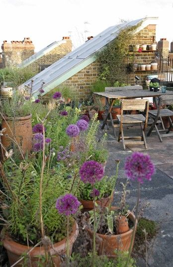 Roof terrace in south London.