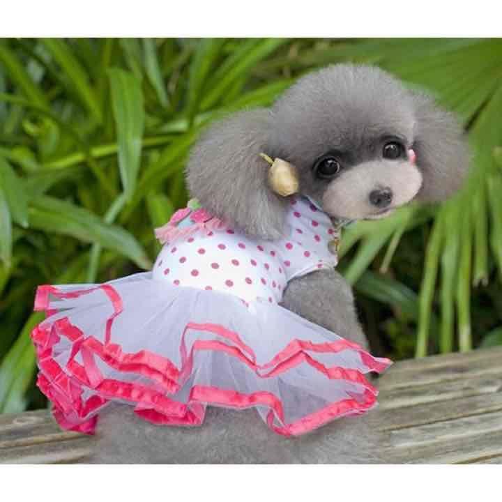 メルカリ - 韓国風ローズ色バブル ドレス 超小型犬小型犬用 春夏秋用犬の服 きれいペット服 中古や未使用のフリマ