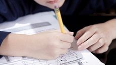 What's the Difference Between Dyscalculia and Math Troubles Associated With Dyslexia and Dyspraxia?
