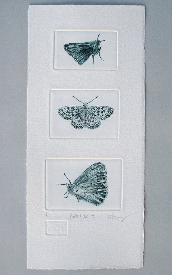 Butterflies. Drypoint trio hand made print. Skipper, Fritillary & Holly Blue Butterfly on Etsy, $110.84 AUD