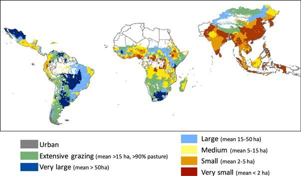 """GLP su Twitter: """"Average farm size & smallholder contributions to global food production https://t.co/tAPu7awt0T @IOPscience #landsystems #usedplanet https://t.co/0F02lsTq6I"""""""