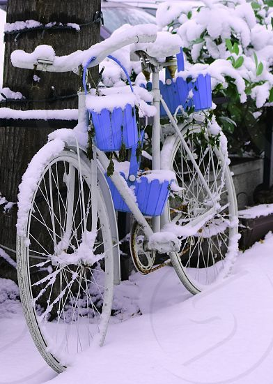 Photo by Valentina Popovic - bicycle