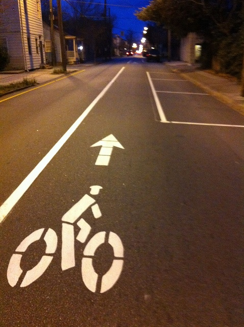 Bike lane in Savannah