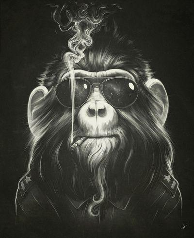 Smoke 'Em If You Got 'Em  by Dr. Lukas Brezak