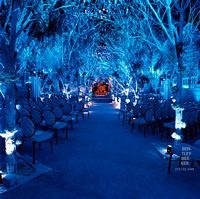 The wedding of Melissa Rivers.  It's like getting married at midnight in the forest. Dramatic blue lighting and branches as a canopy.