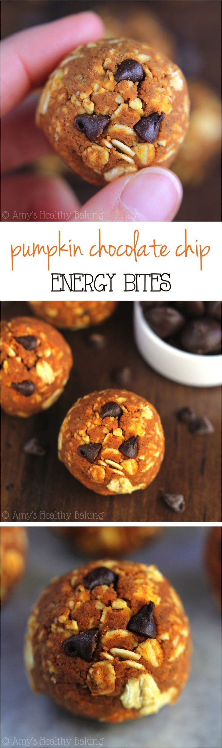 Pumpkin Chocolate Chip Energy Bites - Like a healthy snack version of the cookies! Only 6 ingredients and almost 10 grams of protein!