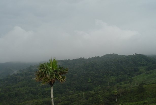 Chagres National Park, Panama!