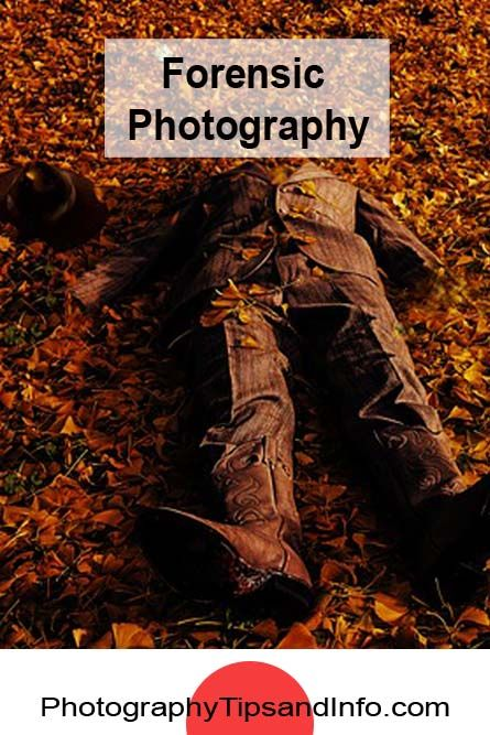 A great article about the use of forensic photography in investigative work. Read the article here:  http://www.photographytipsandinfo.com/forensic-photography-used-in-todays-society/