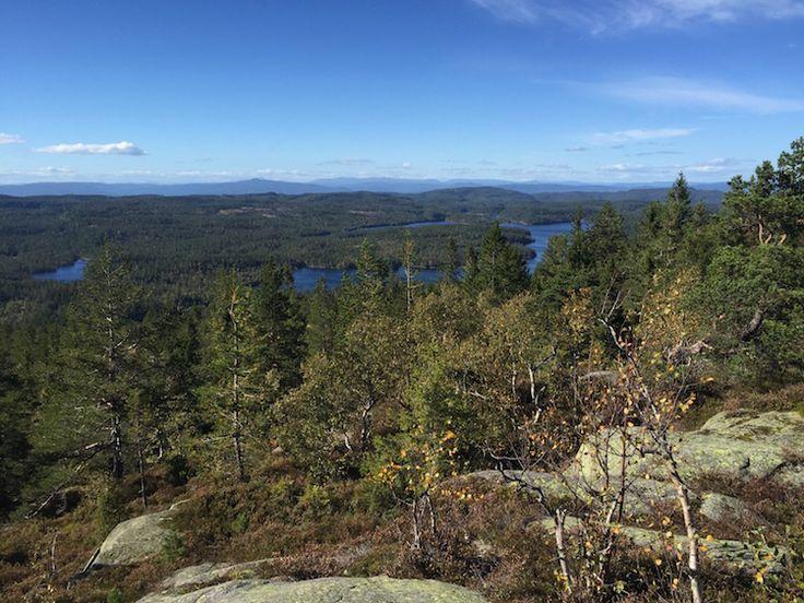 View from Vestfjellet in Vestfold