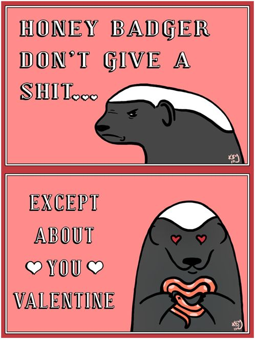 @Melissa Baker  Message on card at work: To my honey badger - it takes what it wants.
