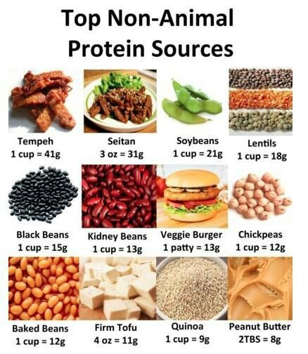 Super-handy chart showing protein contents of non-meat sources.