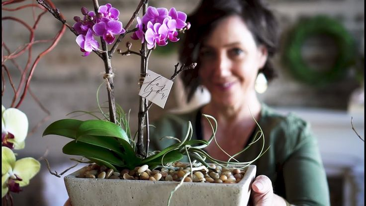 Style an Orchid Plant Like a Pro www.LiaGriffith.com #OrchidPlant #StylingOrchids #VideoTutorial #DIYStyling #DIYHomeDecor
